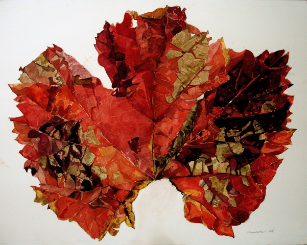 Big Red Grape Leaf